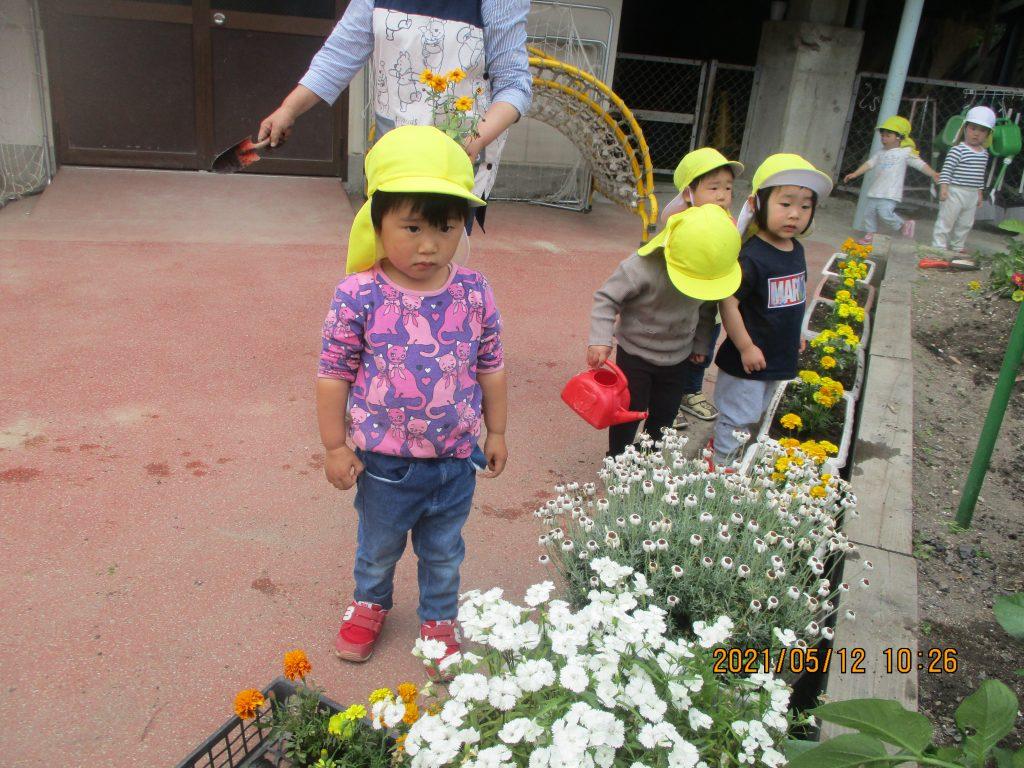 植物に触れる楽しさと子ども達の感性を育てる。